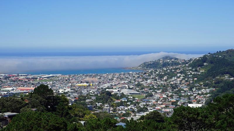 Wellington: Entdecke die Hauptstadt Neuseelands!
